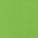 Τεχνόδερμα Πράσινο 13403
